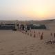 Evening Desert Safari Deals